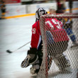 Stock Photo: Hockey goalie