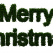 Stock Photo: Merry Christmas inscription made ​​of twigs Christmas trees