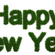 Happy New Year inscription made of twigs Christmas trees - Stockfoto