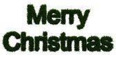 Merry Christmas inscription made ​​of twigs Christmas trees — Stock Photo