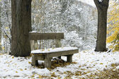 Panchina sotto la neve a winter park — Foto Stock