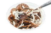 Salad dish with marinaded mushrooms — Stock Photo