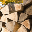 Woodpile of firewood - Stock Photo