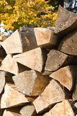 Hranice dřeva palivové dříví — Stock fotografie