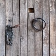 Stock Photo: Wooden door with iron ring