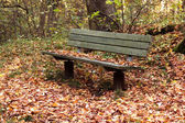 Bench in the autumn park — Stock Photo