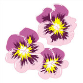 Three rose flowerses pansy — Stock Vector