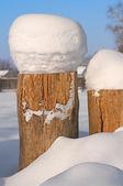 Tree Stump covered in snow. — Stock Photo