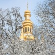 Orthodox Church and the snow covered trees. — Stock Photo