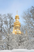 Orthodox Church and the snow covered trees. — Stok fotoğraf
