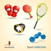 Sport icons. Vector set — ストックベクタ