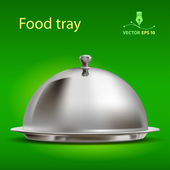 Food tray — Stock Vector