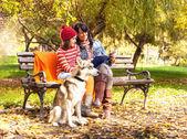 Krásný podzimní den v parku — Stock fotografie