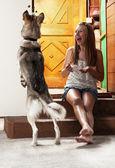 Teenage girl feeding dog — Stock Photo