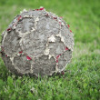 Royalty-Free Stock Photo: Old Soccer Ball