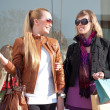Portrait of two happy young women walking together with shopping bags — Foto de stock #23109376