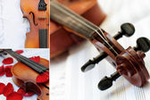 Beautiful old violin. Collage — Stock Photo