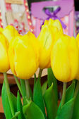 Yellow tulips and gifts — Foto de Stock