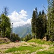 Beautiful Caucasus Mountains, Sochi, Russia. Krasnaya Polyana Ski Resort — Stock Photo #48306885
