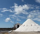 Salt in eco museum Troncalhada - Aveiro — Stock Photo