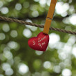 Heart with love — Stok Fotoğraf #30877235