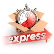 3d express delivery concept — Stock Photo #48761077