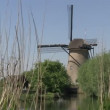 Dutch windmills near Kinderdijk, The Netherlands — Stock Video