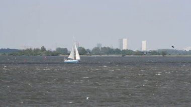 Sailing boat in The Netherlands — Stock Video
