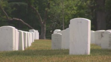 Arlington Cemetery. — Stock Video