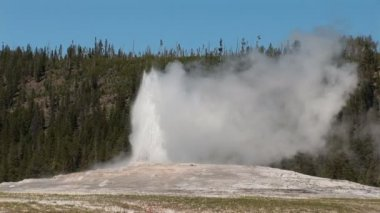 Old Faithful in Yellowstone National Park — Stock Video