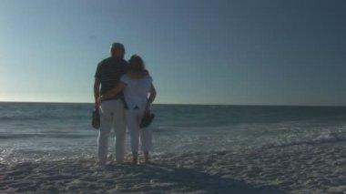 Senior couple on beach — Stock Video