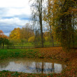 Pond in the autumn park — Stock Photo