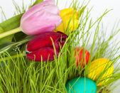 Los tulipanes y los huevos de pascua — Foto de Stock
