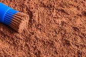 Cocoa powder  — Stockfoto