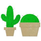 Rice paper cut cactus — Stock Photo