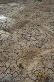 Cracked clay ground into the dry lake — Stock Photo