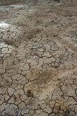 Knäckt lera mals till sjön torr — Stockfoto