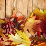 Autumn leaves on wood — Stock Photo #12795604