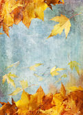 Yellow autumn leaves painting — Stock Photo