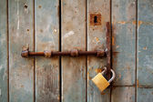 Weathered old door — Stock Photo