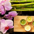 Spa scene with pink orchids, bamboo and candles — Stock Photo #13646346