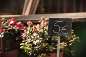 Flores no mercado — Foto Stock