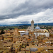 View of Siena and the Cathedral — Stock Photo #25065557