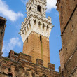Torre del Mangia, Siena — Stock Photo