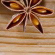 star anise — Photo