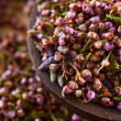 Stock Photo: Dried heather hips