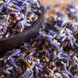 Dried lavender — Stock Photo #35801489
