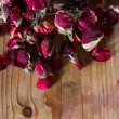 Dried rose buds — Stock Photo