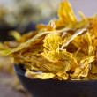Dried sunflower petals — Stock Photo #35801659
