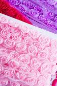 Rose ribbons — Stock Photo